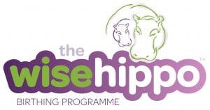 Wise Hippo Logo Wide RGB